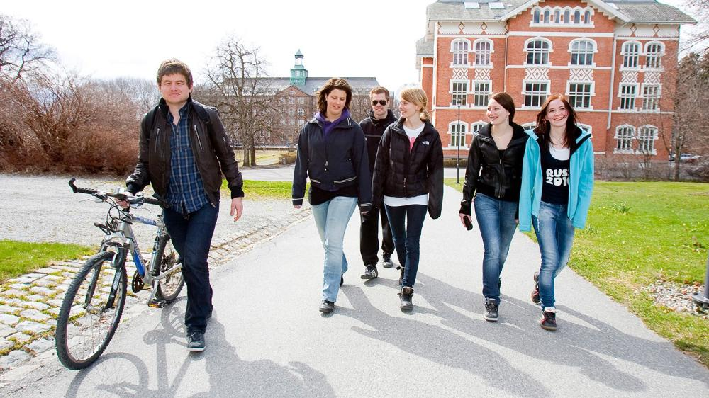 Image result for students in norway